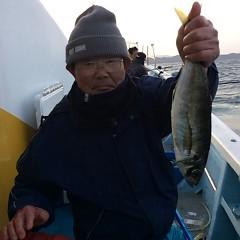 2月26日 (日)午後便・アジ釣りの写真その6