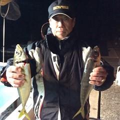 2月26日 (日)午後便・アジ釣りの写真その7