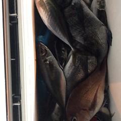 3月22日 (水)午後便・アジ釣りの写真その1