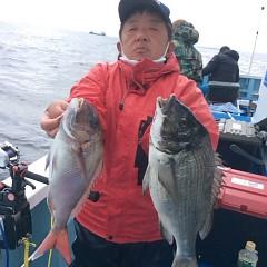3月25日 (土)午後便・アジ釣りの写真その4