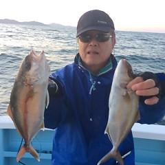 4月23日 (日)午後便・ウタセ真鯛の写真その2