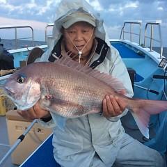 4月24日 (月)午後便・ウタセ真鯛の写真その1