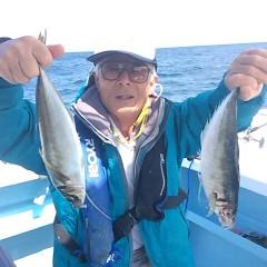4月25日(火)午前・午後便・アジ釣りの写真その2