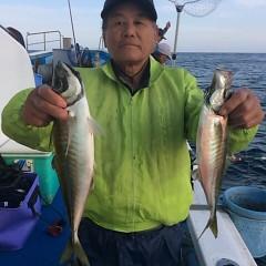 4月25日(火)午前・午後便・アジ釣りの写真その10