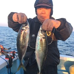 4月28日 (水)午後便・アジ釣りの写真その4