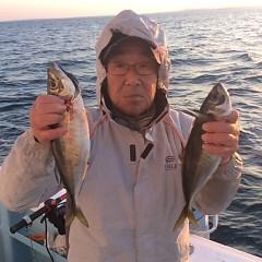 4月28日 (水)午後便・アジ釣りの写真その6