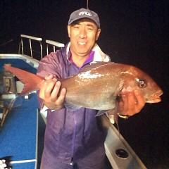 5月12日 (金)午後便・ウタセ真鯛の写真その1