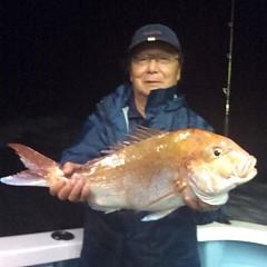 5月12日 (金)午後便・ウタセ真鯛の写真その2