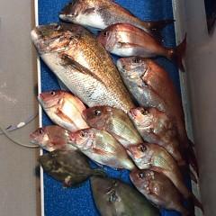 5月22日(月)午後便・ウタセ真鯛釣りの写真その2