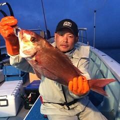 5月26日 (金)午後便・ウタセ真鯛の写真その5