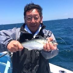 5月28日 (日)午前便・アジ釣りの写真その2