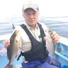 5月31日(水)午前・午後便・アジ・イサキ釣りの写真その3