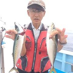 5月31日(水)午前・午後便・アジ・イサキ釣りの写真その4