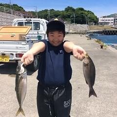 6月12日(月)午前便・アジ・イサキ釣りの写真その1