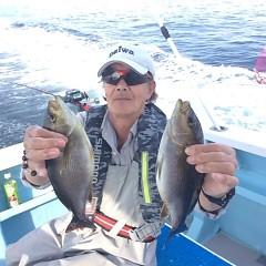 6月13日 (火)午後便・アジ・イサキ釣りの写真その1