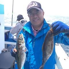 6月14日 (水)午前便・アジ釣りの写真その1