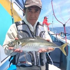 6月14日 (水)午前便・アジ釣りの写真その4