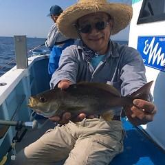 6月15日 (木)午後便・アジ・イサキ釣りの写真その3