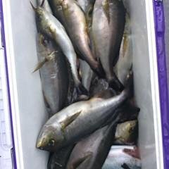 6月18日(日)午前便・イサキ、アジ釣りの写真その1