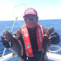 6月19日(月)午前便・イサキ、アジ釣りの写真その3
