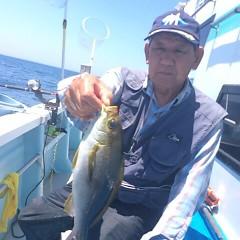 6月19日(月)午前便・イサキ、アジ釣りの写真その4