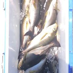 6月19日(月)午前便・イサキ、アジ釣りの写真その5
