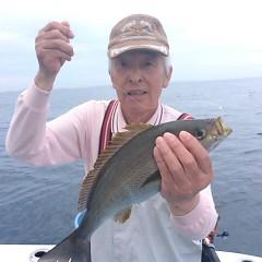 6月26日(月)午午後便・イサキ釣りの写真その1
