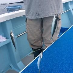 6月26日(月)午午後便・イサキ釣りの写真その6