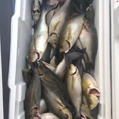 6月27日(水)午後便・イサキ釣りの写真その6