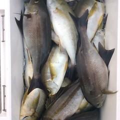 6月27日(水)午後便・イサキ釣りの写真その8