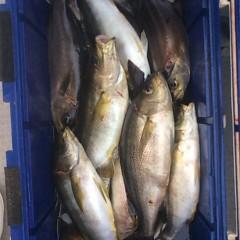 6月27日(水)午後便・イサキ釣りの写真その12