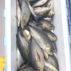 6月29日(木)午前便・イサキ釣りの写真その5