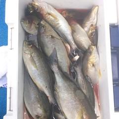 6月29日(木)午前便・イサキ釣りの写真その9