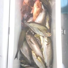 6月29日(木)午前便・イサキ釣りの写真その10