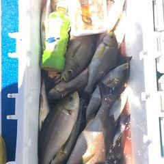 7月14日(木) 午前便・イサキ釣りの写真その8