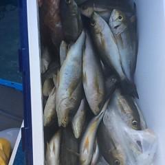 7月15日(土) 午後便・イサキ釣りの写真その11