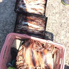 7月20日(木) 一日便・スルメイカ釣りの写真その7