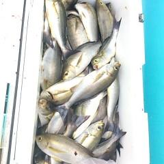 7月21日(金) 午前便・イサキ釣りの写真その5