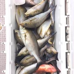 7月21日(金) 午前便・イサキ釣りの写真その6