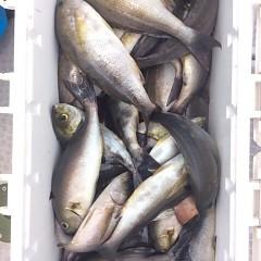 7月21日(金) 午前便・イサキ釣りの写真その7