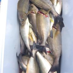 7月21日(金) 午前便・イサキ釣りの写真その8