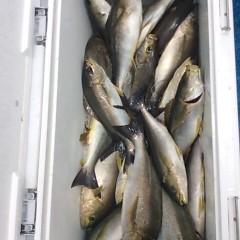 7月21日(金) 午前便・イサキ釣りの写真その9