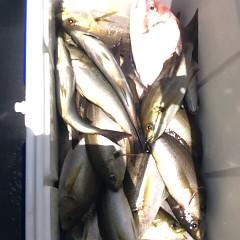 7月22日(土) 午前便・イサキ釣りの写真その6