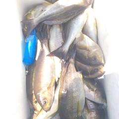 7月22日(土) 午前便・イサキ釣りの写真その10