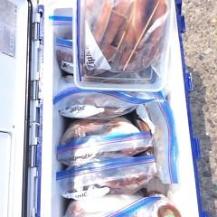 7月30日(日) 一日便・スルメイカ釣りの写真その9
