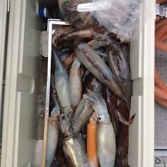 8月2日(水)スルメイカ釣り一日便の写真その1