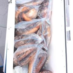 8月11日(金) 一日便・スルメイカ釣りの写真その9