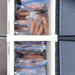 8月11日(金) 一日便・スルメイカ釣りの写真その12