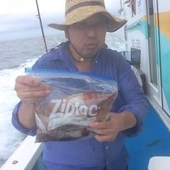 8月12日(土) 一日便・スルメイカ釣りの写真その4