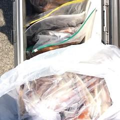 8月17日(木) 一日便・スルメイカ釣りの写真その7